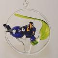 Vogelfamilie Blaumeise mit Jungvogel im Ring, hängend