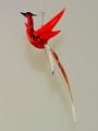 Paradiesvogel hängend, rot