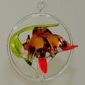 Vogelfamilie Gartenrotschwanz mit Jungvogel im Ring, -Neu-