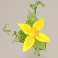 Blüte stehend und hängend, klein, gelb