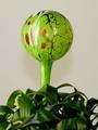 Wasserspenderkugel moosgrün mit farb. Granulaten