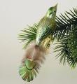 kleiner Vogel,gespritzt,Naturfeder,  lindgrün,grün  -Neu-
