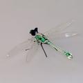Libelle stehend, Fadenglas, kristall - grün