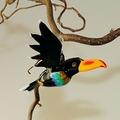 Regenbogentukan fliegend, mit orangefarb. Schnabel