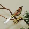 Mini-Vogel, gespr.  Glasschwanz, Nr 398, matt grün, braun