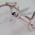 Libelle hängend, Klarglas, Fadenglas, rot