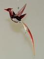 Paradiesvogel hängend, flieder